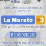 Cartell Marató 2013