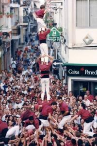 13-8-1995: Primer quatre de set amb la'gulla descarregat de la Jove de Sitges a la plaça del Cap de la Vila